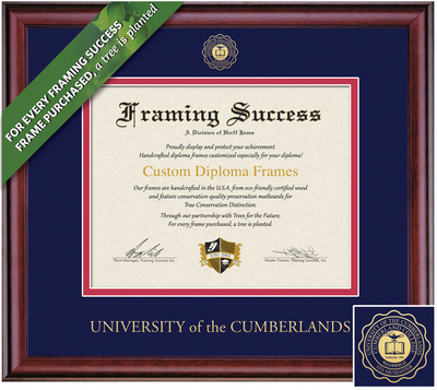 Framing Success 8.5 x 11 Classic Gold Embossed School Seal Bachelors Diploma Frame