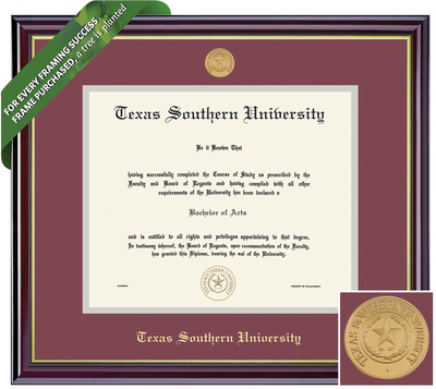Framing Success Windsor Diploma Frame with Medllion, Dbl Mat in Gloss Cherry Finish and Gold Trim