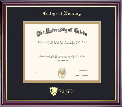 Framing Success Windsor Diploma Frame, Dbl Matted, Gold Trim. Nursing Masters or Nursing Doctorate
