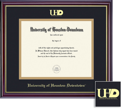 University of Houston - Downtown Bookstore - Framing Success Windsor ...