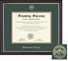 Framing Success Prestige Dip Frame, Green & Gold Mat in a Satin Black Finish with Gold Accents