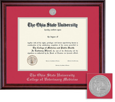 Framing Success Vet Medicine Classic Diploma Frame