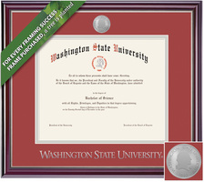 Framing Success Jefferson Diploma Frame. BAMAPharmArchitectureVet
