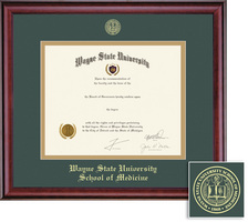 Framing Success Classic School of Medicine Double Matted Diploma Frame in a Burnished Cherry Finish