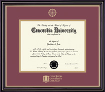 Framing Success Prestige Diploma Frame. Doctorate