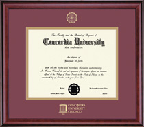Framing Success Classic Diploma Frame. Doctorate