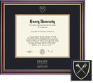 Framing Success Windsor MD Diploma Frame in Gloss Cherry Finish, Gold Trim