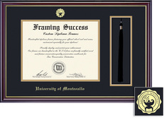 Framing Success Windsor Double Matted Diploma Tassel Frame in a Gloss Cherry Finish, Gold Trim