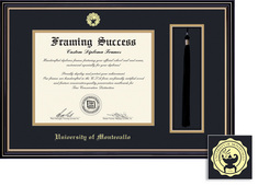 Framing Success Prestige Double Matted Diploma Tassel Frame in a Satin Black Finish, Gold Trim