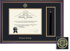 Framing Success Windsor Diploma Tassel Frame, Double Matted in Gloss Cherry Finish, Gold Trim.