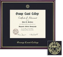 Framing Success Academic Assoc Dip Frame, Single Mat in gloss cherry finish, gld inner bevel