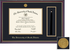 Framing Success Windsor Diploma, Tassel Mdl Frame. Dbl Matted in Gloss Cherry Finish, Gold Trim