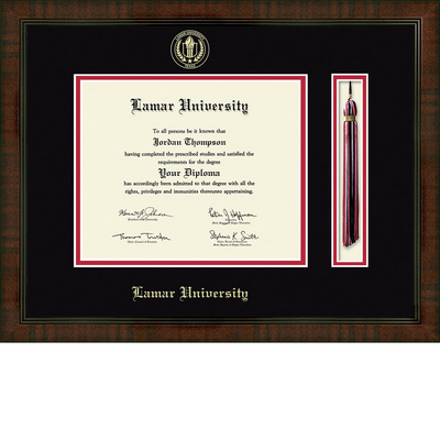 Church Hill Classics Tassel Diploma Frame. Bachelors, Masters, PhD