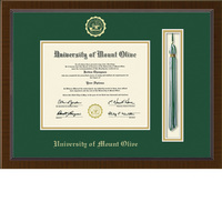 Church Hill Classics Tassel Diploma Frame. Associates Bachelors. (Online Only)