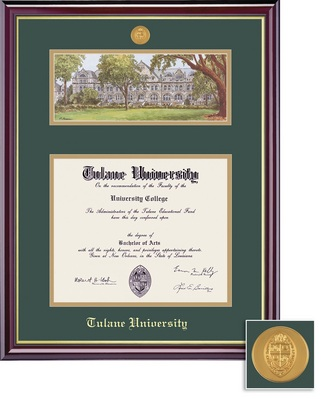 Framing Success Windsor Mdl BA Diploma Litho Frame. Double Matted in Gloss Cherry Finish, Gold Trim