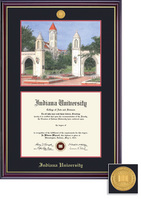 Framing Success Windsor MedallionLitho Double Matted Diploma Frame