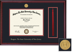 Framing Success Classic Medallion DiplomaTassel 8.5x11 Double Matted Diploma Frame