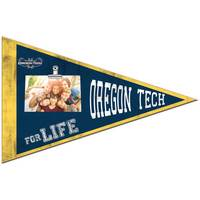 pennant, photo, photo frame, picture, dcor, home