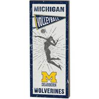 Vintage Player Plaque Volleyball Women