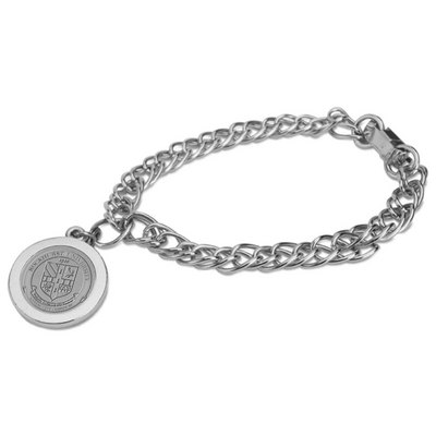 Silver Charm Bracelet (Online Only)