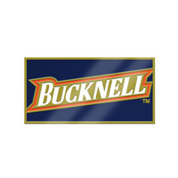 Bucknell Brass Lapel Pin