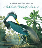 Audubons Birds of America (smaller version)