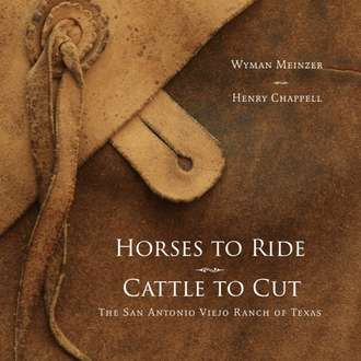 Horses to Ride Cattle to Cut