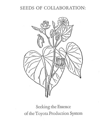 Seeds of Collaboration