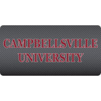 Stockdale Acrylic Carbon License Plate