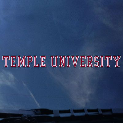 Temple Color Shock Strip Decal