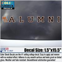 Alumni Color Shock Strip Decal