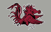 South Carolina Gamecocks Color Shock Mascot Decal