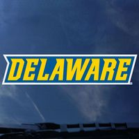 Delaware Blue Hens Color Shock Wordmark Decal