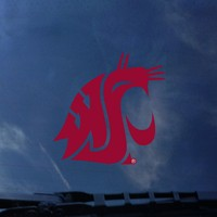 Washington State Cougars Color Shock Wordmark Decal