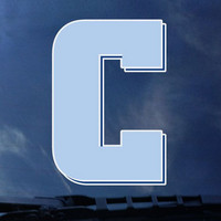 Columbia Lions Color Shock Wordmark Decal