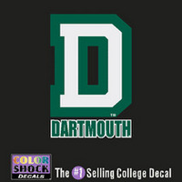 Color Shock Wordmark Decal