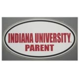 Indiana Hoosiers Color Shock Wordmark Decal