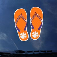 Clemson Tigers Color Shock School Name Decal