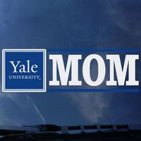 Yale Bulldogs Colorshock Decal