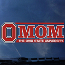 Ohio State Buckeyes Colorshock Car Decal