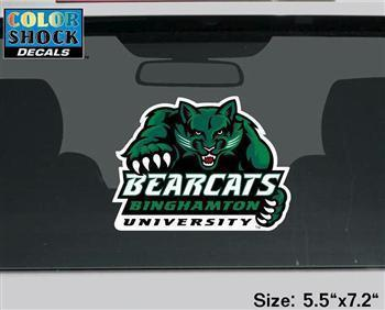 Oversized ColorShock Decal