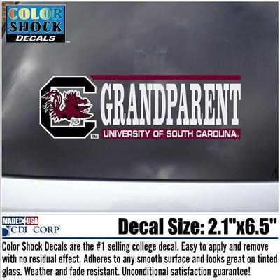 South Carolina Gamecocks Colorshock Decal