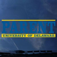 Delaware Blue Hens Colorshock Decal