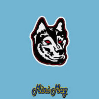 Northeastern Huskies CDI Mini Car Magnet