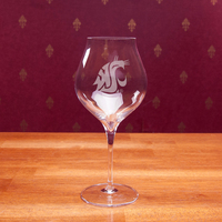 Luigi Bormioli Corvina Amorone Titanium Set of Two Red Wine Glass