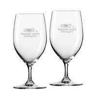 Set of 2 Riedel Bar Footed Beer Glass