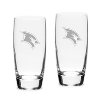 Set of 2 Etched Luigi Bormioli Cooler Glasses (online only)