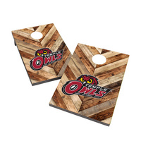 Temple University Owls 2x3 Cornhole Bag Toss