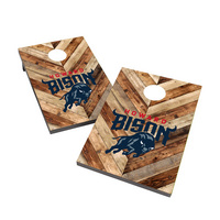 Howard University Bison 2x3 Cornhole Bag Toss
