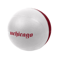 University of Chicago Foam Basketball